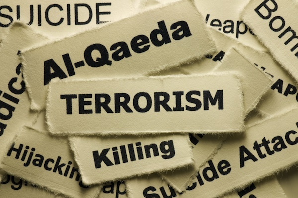 essay on terrorism and image of pakistan abroad