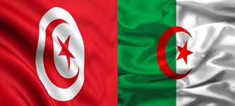 """La coopération sécuritaire algéro-tunisienne """"se déroule bien"""""""