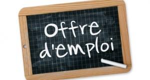 Offre d'emploi Réf. EU-2015-01